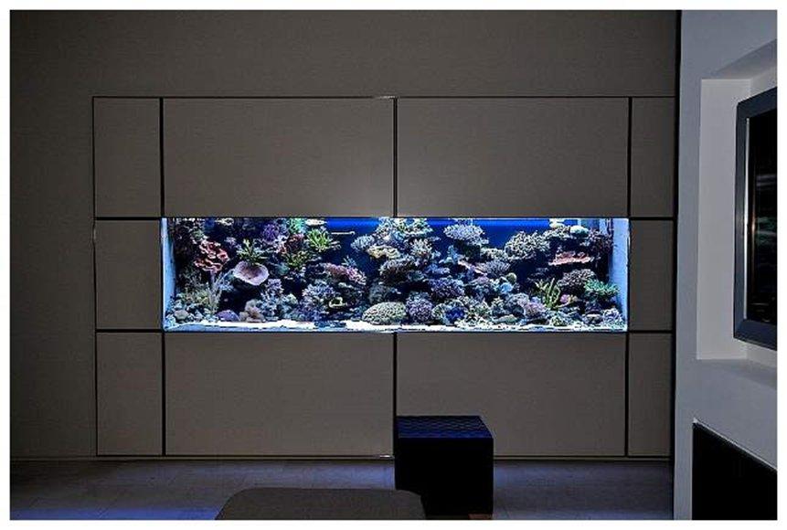 Morské akváriá