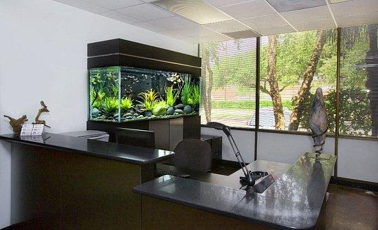 Sladkovodné akváriá